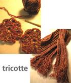 Tricotte