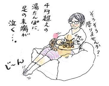 Catwarmer