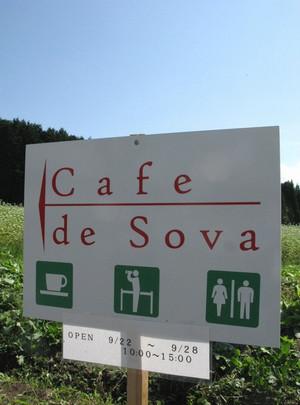Cafesova1