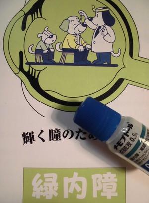 Ryokunaisho