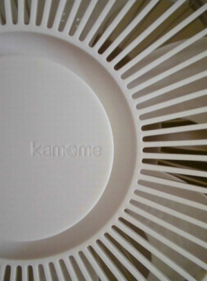 Kamome5