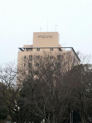 Chibau1