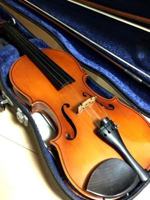 Violinszk