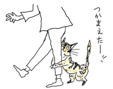 Shigamitsuki